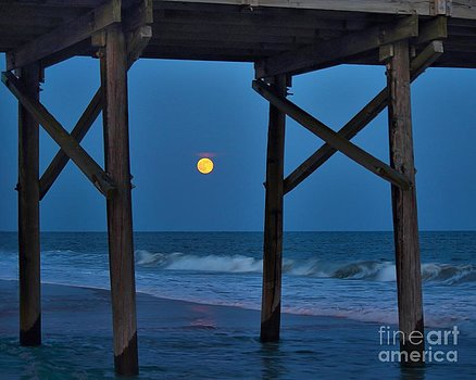 Lovers Moon by Frances Marian Lewis Photography