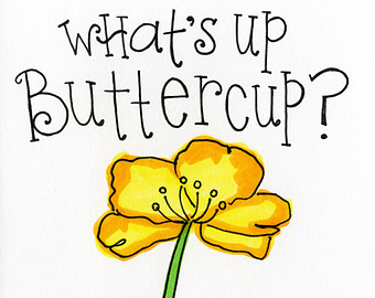 What's Up Buttercup